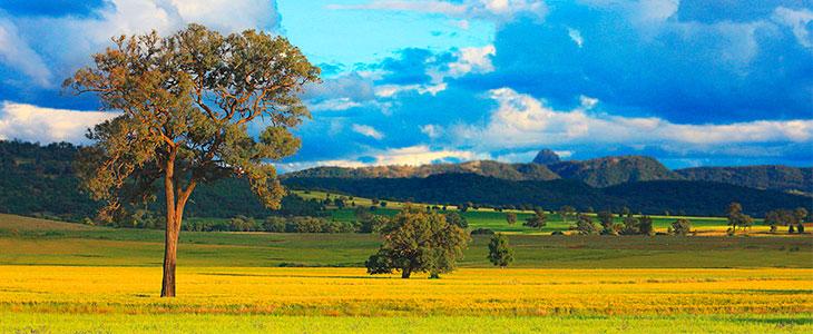 Сколько нужно средств на самостоятельную поездку в Австралию