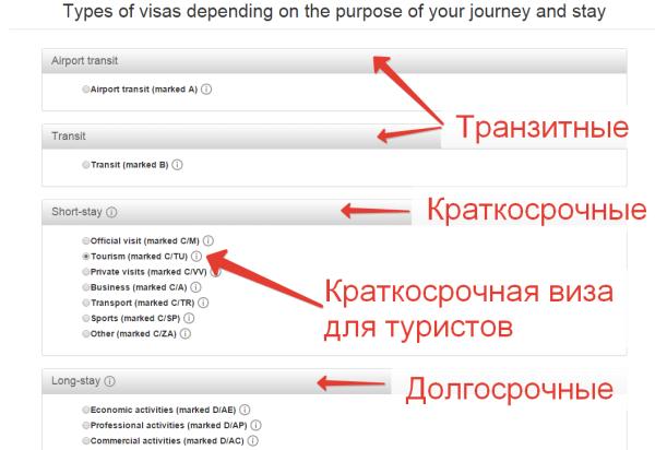 выбор вида визы