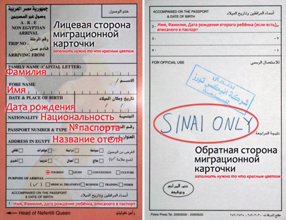 Миграционная карточка для въезда в Египет