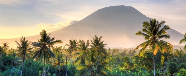 Виза на Бали (Индонезия): как получить и продлить её до 180 дней россиянам