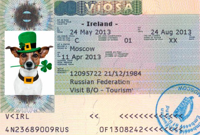 Как выглядит виза в Ирландию