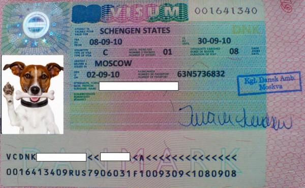 Как выглядит Шенгенская виза Дании