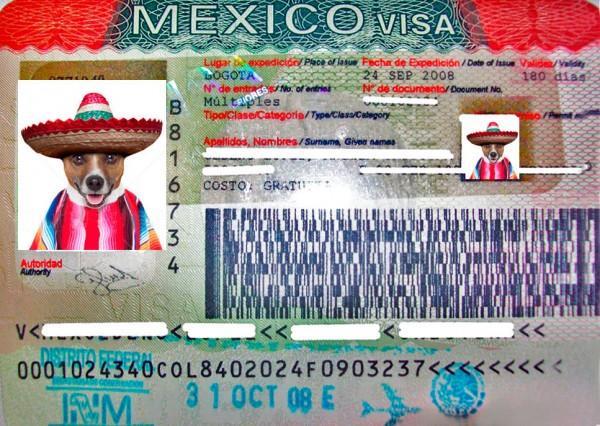Мексиканская виза на полгода