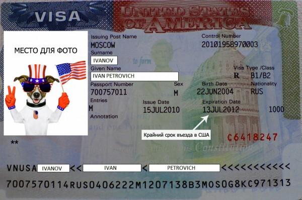 Как выглядит американская виза
