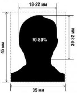 Образец фото на визовое разрешение